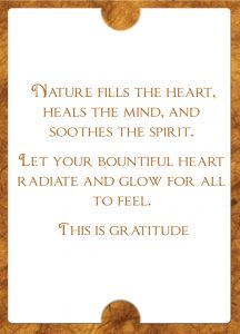 Inspiration For Your Soul Gratitude